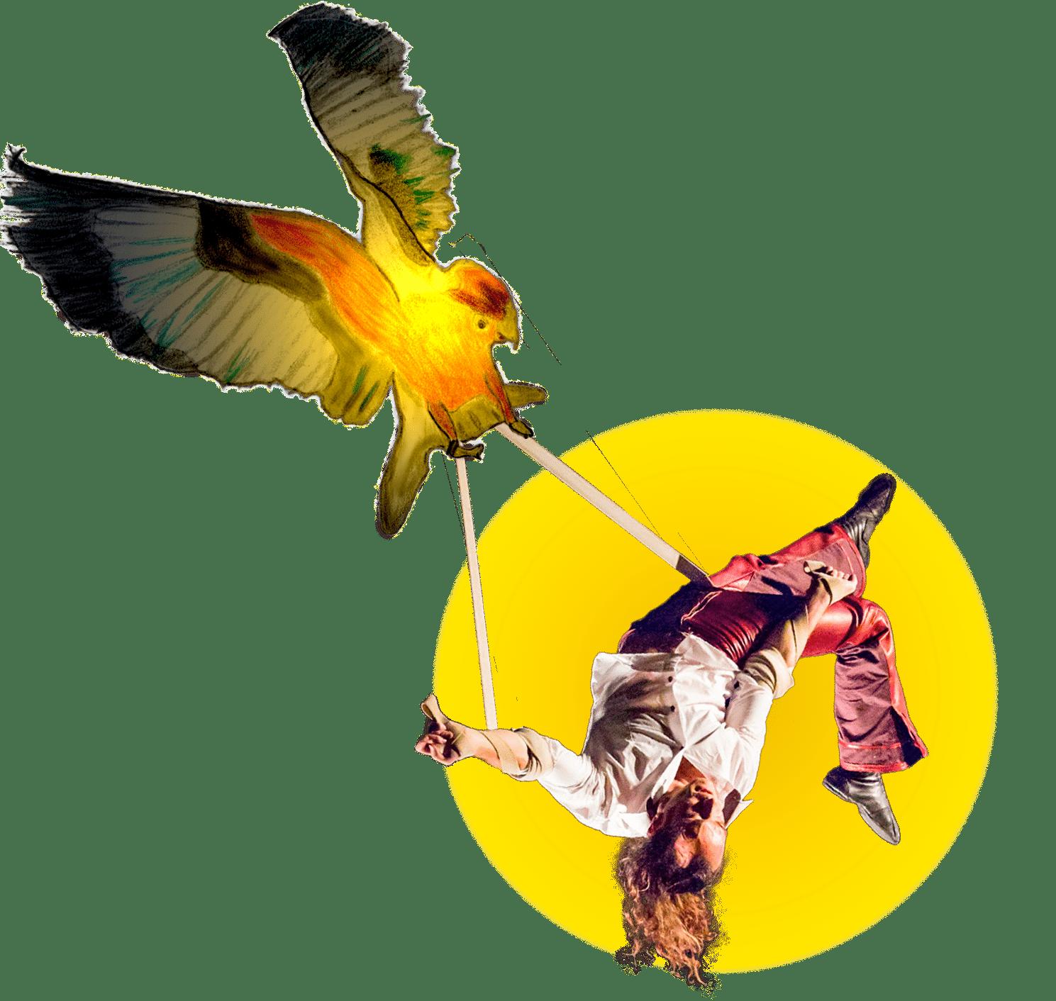Rocco Le Flem - Artiste de cirque